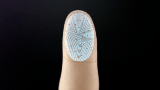 the-sensor-takes-a-high-resolution-image-of-your-fingerprint